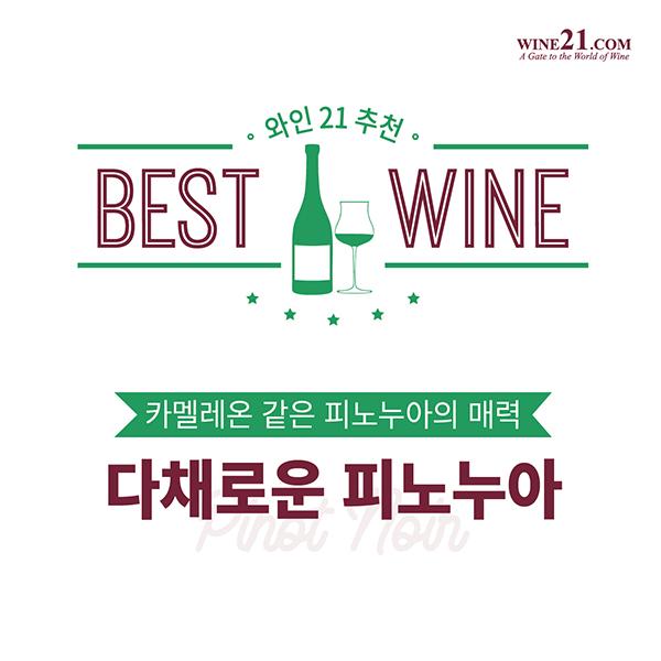 와인21추천 BEST OF BEST, 다채로운 피노 누아