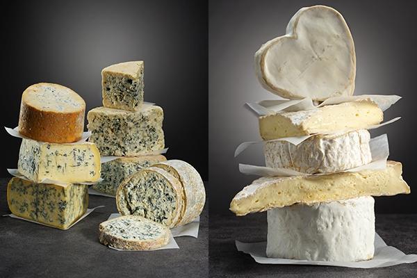 치즈도 패밀리가 있다?!