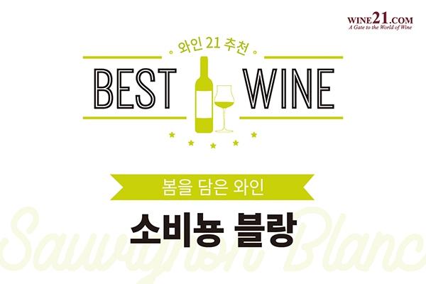 와인21추천 BEST10 - 봄을 담은 와인, 소비뇽 블랑(Sauvignon Blanc)