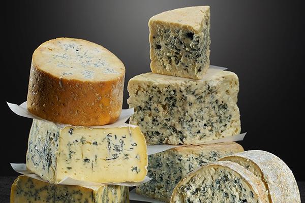 블루 치즈에는 왜 푸른곰팡이가 있을까?