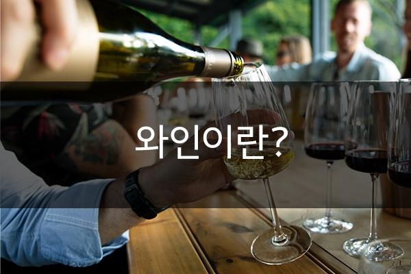 [와인상식] 와인이란?
