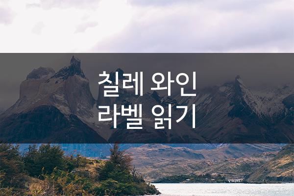 [와인상식] 칠레 와인 라벨 읽기