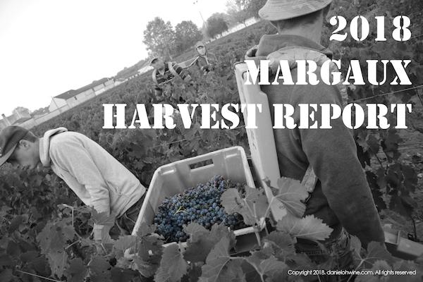 마고(Margaux) 2018 빈티지 수확 보고서