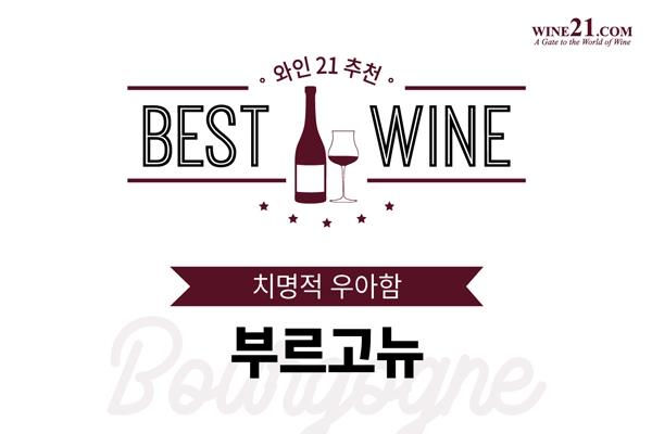와인21추천 BEST OF BEST  치명적 우아함, 부르고뉴