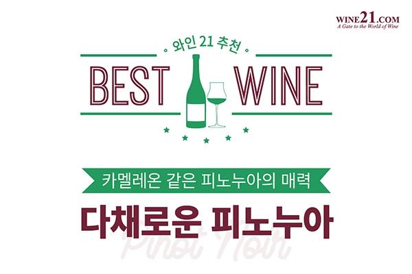 와인21추천 BEST OF BEST '다채로운 피노 누아'