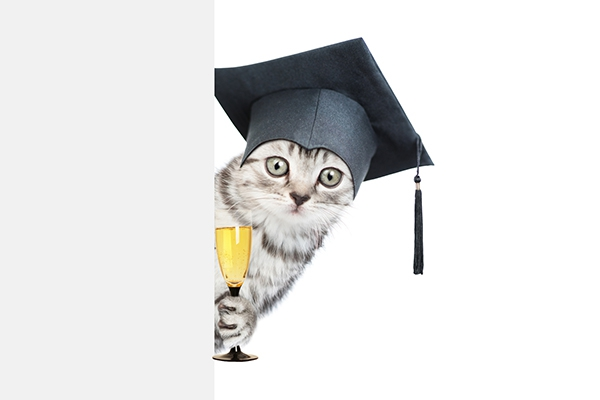 졸업 시즌의 축하주, 스파클링 와인