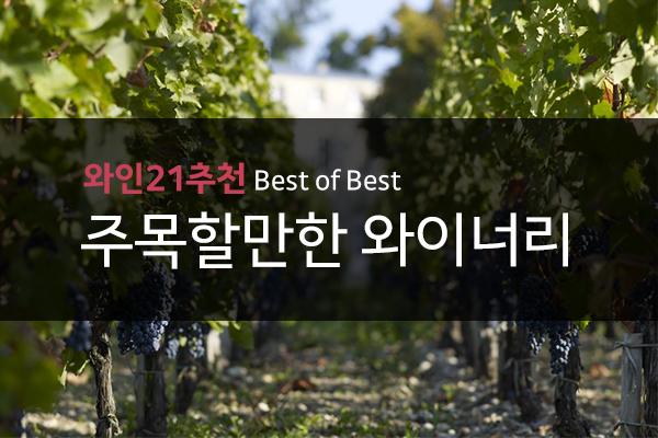 와인21추천 BEST OF BEST 주목할만한 와이너리
