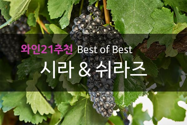 와인21추천 BEST OF BEST 시라 & 쉬라즈
